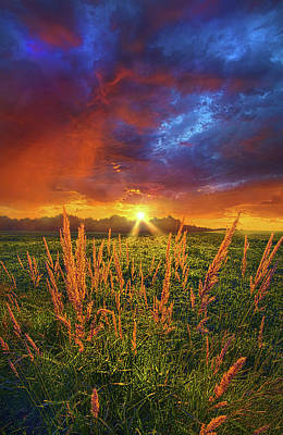 Once Uopn A Dawning Light Poster by Phil Koch