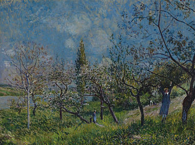 Orchard In Spring Poster by Alfred Sisley