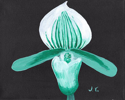 Orchid-paphiopedilum Bob Nagel Poster by M Valeriano