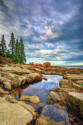 Otter Point Reflections Poster by Rick Berk