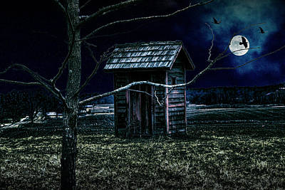 Outhouse In The Moonlight With Flying Crows Poster by Randall Nyhof