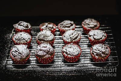 Oven Fresh Cupcakes Poster by Jorgo Photography - Wall Art Gallery