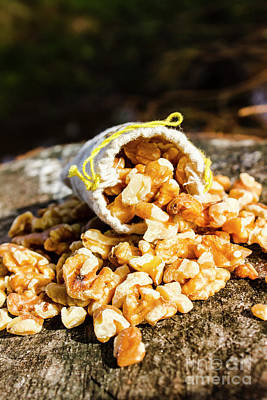 Overflowing Sack Of Fresh Walnuts Poster by Jorgo Photography - Wall Art Gallery