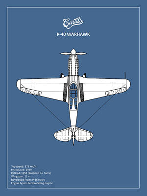 P-40 Warhawk Poster by Mark Rogan