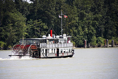 Paddle Wheeler On The Fraser Poster by Marion McCristall