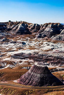 Painted Desert Purple Peak Poster by David Waldo