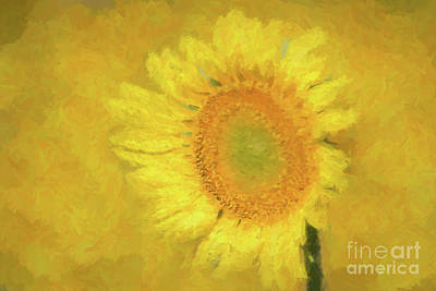Painted Sunflower Poster by Geraldine DeBoer