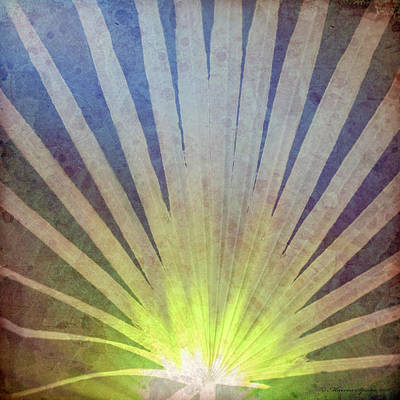 Palm Frond Light Poster by Marvin Spates