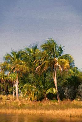 Palms - Naples Florida Poster by Kim Hojnacki