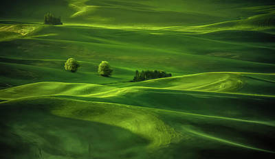 Palouse Waves Poster by Don Schwartz