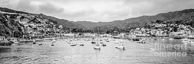 Panorama Of Catalina Island Avalon Bay Poster by Paul Velgos