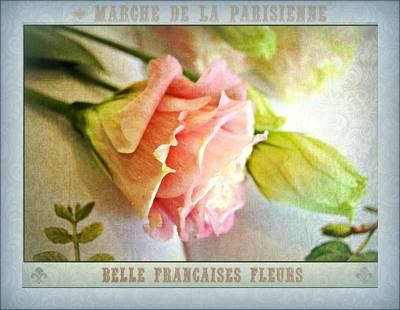 Parisienne Market Poster by Kathy Bucari