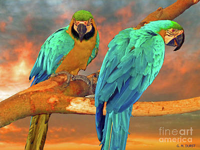 Parrots At Sunset Poster by Michael Durst