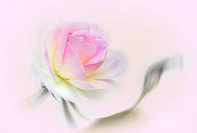 Pastel Passion Poster by Kaye Menner