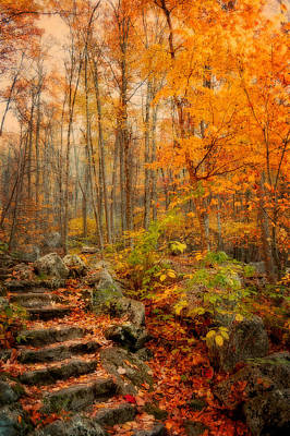 Peaceful Pathway Poster by Kathy Jennings