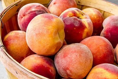 Peach Beauties Poster by Teri Virbickis