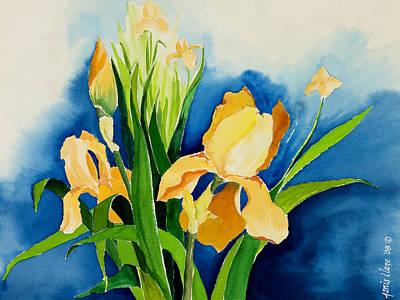 Peach Irises Poster by Janis Grau