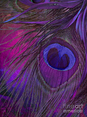 Peacock Candy Purple  Poster by Mindy Sommers