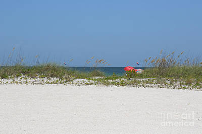 Perfect Beach Day Poster by Carol Groenen
