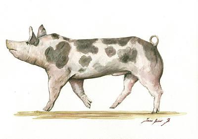 Pietrain Pig Poster by Juan Bosco