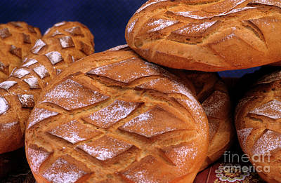 Piles Of Freshly Cooked Loaves Of Bread Poster by Sami Sarkis