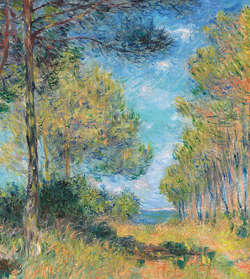 Pine Tree Path At Varengeville Poster by Claude Monet