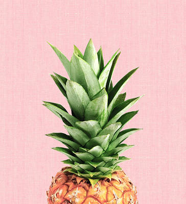 Pineapple And Pink Poster by Vitor Costa