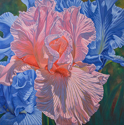 Floralscape 1 - Pink And Blue Irises Poster by Fiona Craig