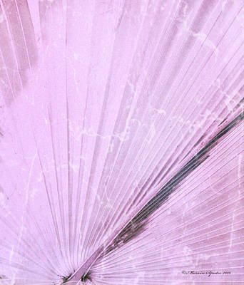 Pink Palm Frond Rh Poster by Marvin Spates