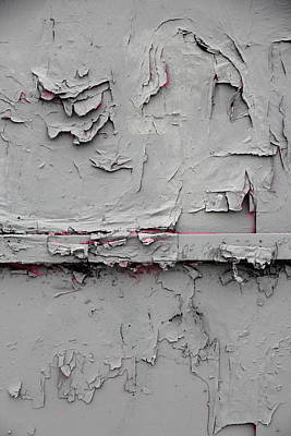 Pink Peeking Through Poster by Kreddible Trout