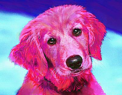 Pink Retriever Poster by Jane Schnetlage