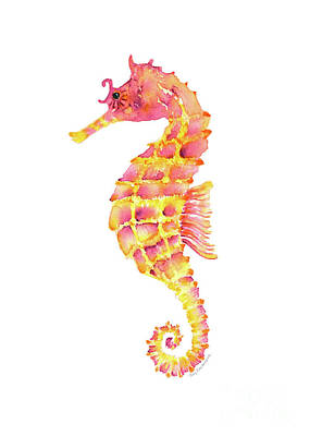 Pink Yellow Seahorse Poster by Amy Kirkpatrick