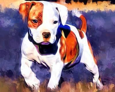 Pit Bull Pup Portrait Poster by Scott Wallace