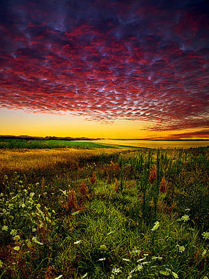 Pleasant Praire Poster by Phil Koch