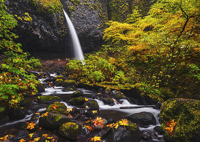 Ponytail Falls Autumn Poster by Vishwanath Bhat