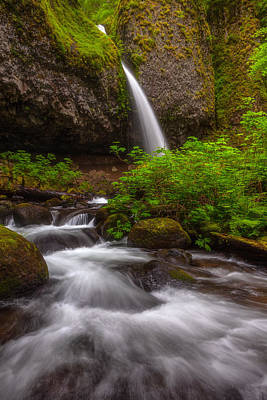 Ponytail Falls Poster by Darren  White
