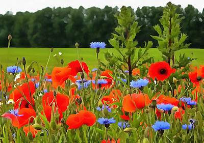 Poppies And Cornflowers Poster by Tracey Harrington-Simpson