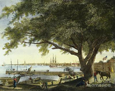 Port Of Philadelphia, 1800 Poster by Granger