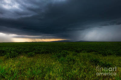 Prairie Storm Poster by Jamie Tipton