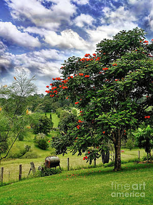 Pretty Countryside Poster by Kaye Menner