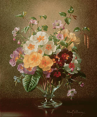 Primulas In A Glass Vase  Poster by Albert Williams