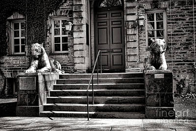 Princeton University Nassau Hall Tigers Poster by Olivier Le Queinec