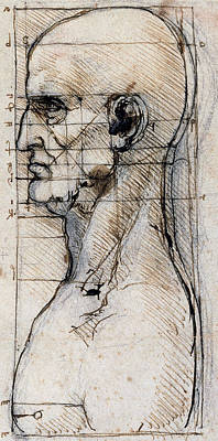 Proportions Of The Face Poster by Leonardo Da Vinci