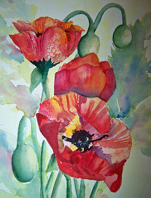 Proud Poppies Poster by Sandy Collier