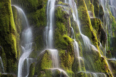 Proxy Falls Form And Light Poster by Leland D Howard
