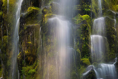 Proxy Falls Textures And Light 2 Poster by Leland D Howard