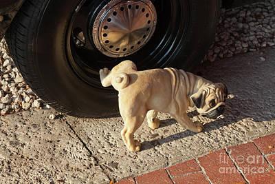 Pug Dog Poster by Juan  Silva