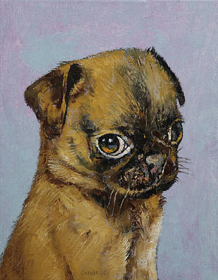 Pug Puppy Poster by Michael Creese