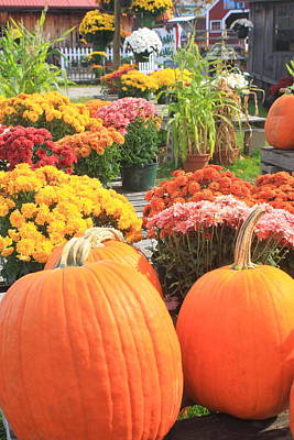 Pumpkins And Mums In Farmstand Poster by John Burk