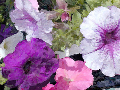Purple And Pink Petunias Oil Painting Poster by Elaine Plesser